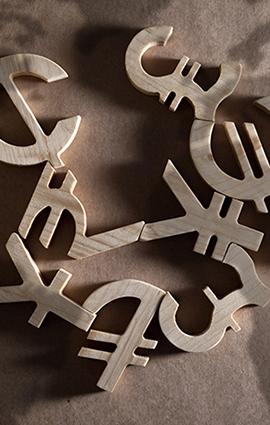 Schimb Valutar / Exchange AGS